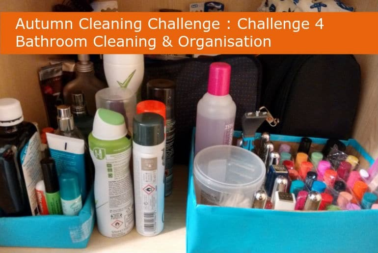 Bathroom Cleaning and Organisation