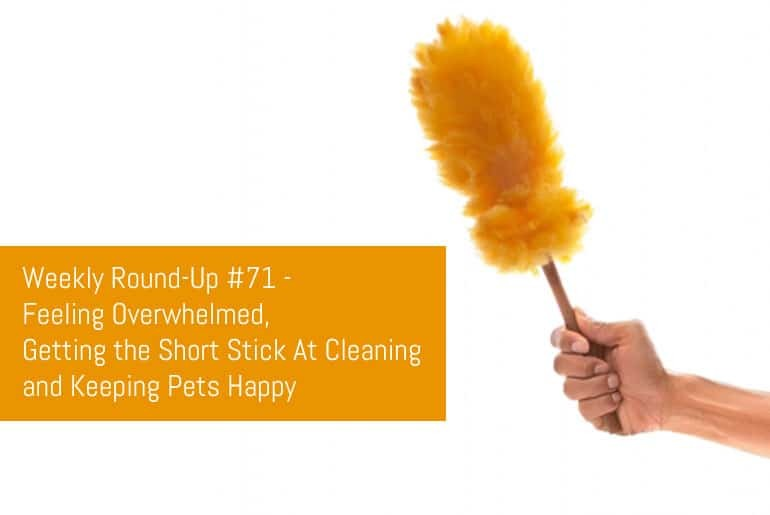 Weekly Round-Up #71 - Feeling Overwhelmed, Getting the Short Stick At Cleaning and Keeping Pets Happy