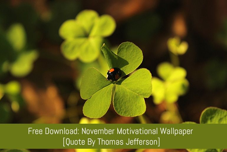 November Motivational Wallpaper [Quote By Thomas Jefferson]