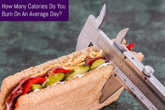 How Many Calories Do You Burn On An Average Day?