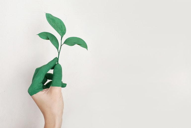 How To Make Your Company More Eco-Friendly
